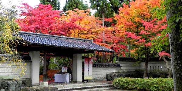 京都 しょうざん